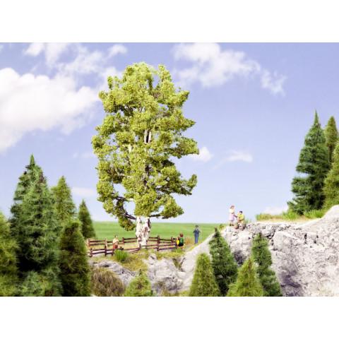 Noch - Árvore, Vidoeiro (Bétula) de Tronco Duplo - Multi Escala: 21641