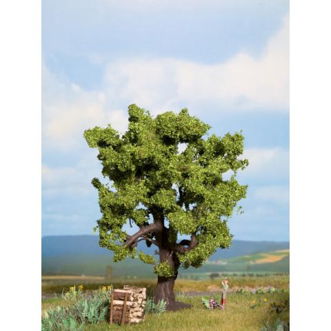 Noch - Árvore, Carvalho (Oak) - Multi Escala: 21760