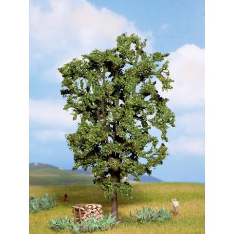 Noch - Árvore, Castanheira (Chestnut Tree) - Multi Escala: 21800