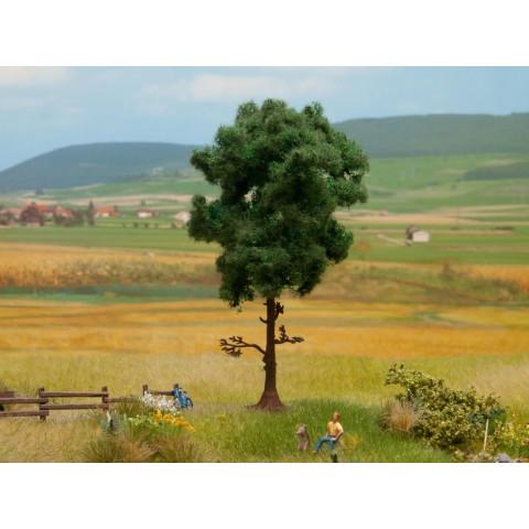 Noch - Árvore, Pinheiro (Pine Tree) - Multi Escala: 21911