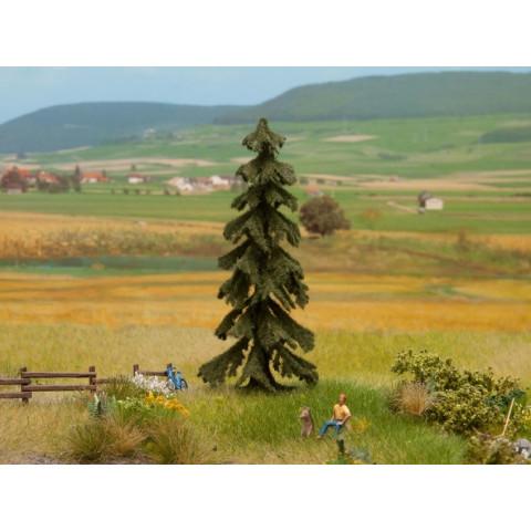 Noch - Árvore, Pinheiro (Spruce Tree) - Multi Escala: 21919