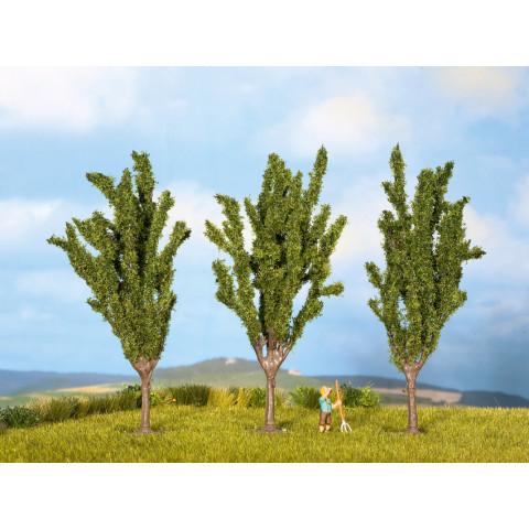 Noch - Árvores, Choupos (Poplars) - Multi Escala: 25525