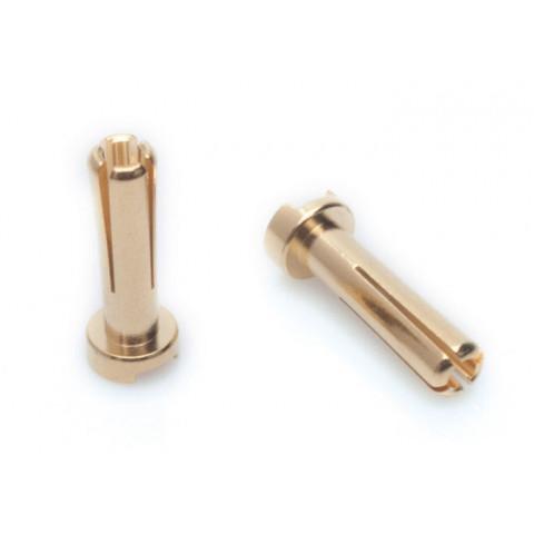 """LRP - Plug """"Bullet"""" Gold 4mm - 5 pares: 65815"""